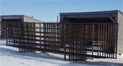 10 Horse Panels
